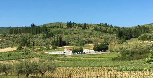 Winery tours and wine tasting in Nemea with Greece2Taste
